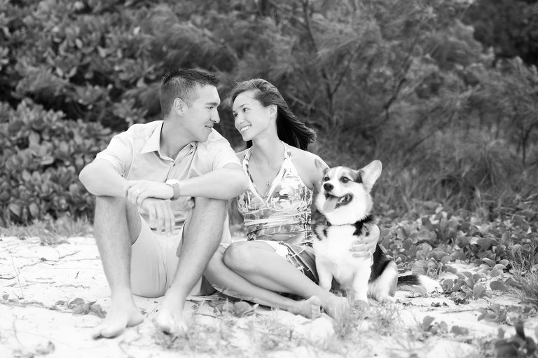 Oahu Photographers for couples | couple sitting on beach with dog